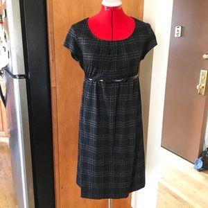 Pea in The Pod Maternity Dress